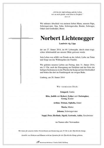 Norbert Lichtenegger