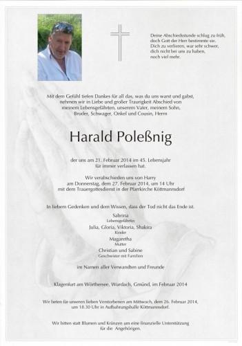 Harald Poleßnig