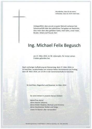 Ing. Michael Felix Begusch