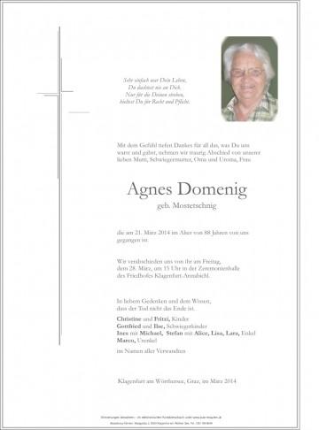 Agnes Domenig