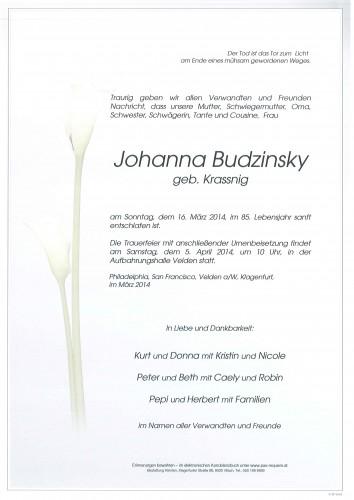 Johanna Budzinsky