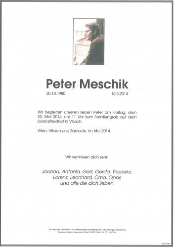 Dipl.-Ing. Peter Meschik