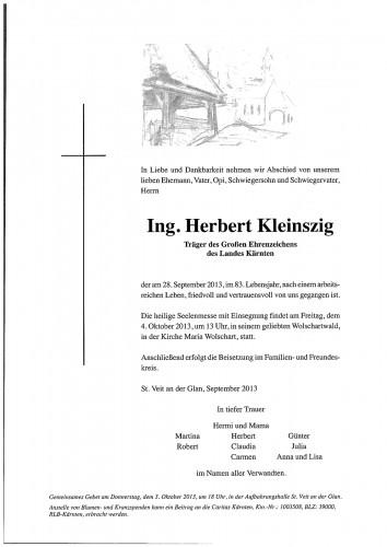 Ing. Herbert Kleinszig