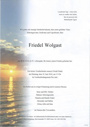 Friedel Wolgast