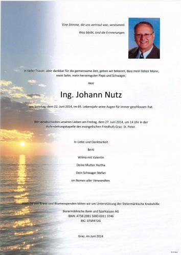 Ing. Johann Nutz