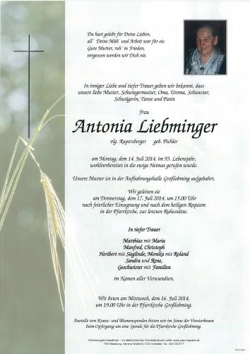 Antonia Liebminger vlg. Rupersberger