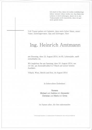 Ing. Heinrich Amtmann