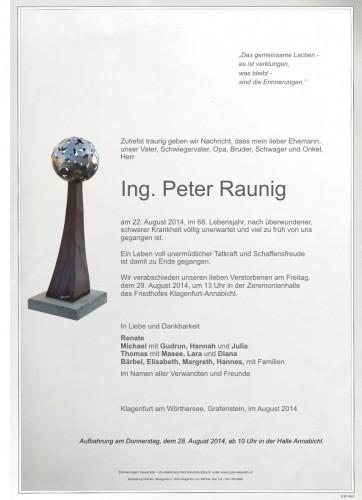 Ing. Peter Raunig