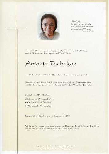 Antonia Tschekon
