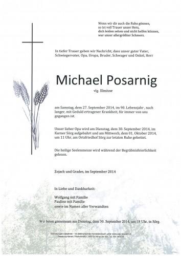 Michael Posarnig