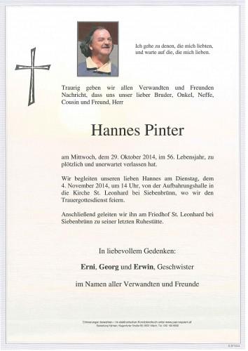 Hannes Pinter