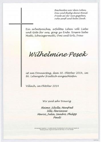 Wilhelmine Pesek