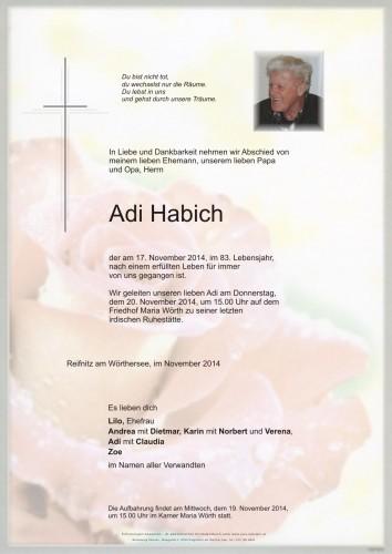 Adi Habich