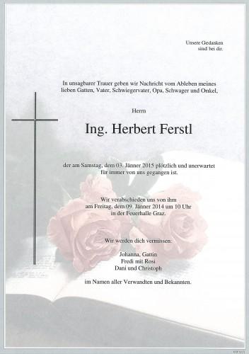 Ing. Herbert Ferstl