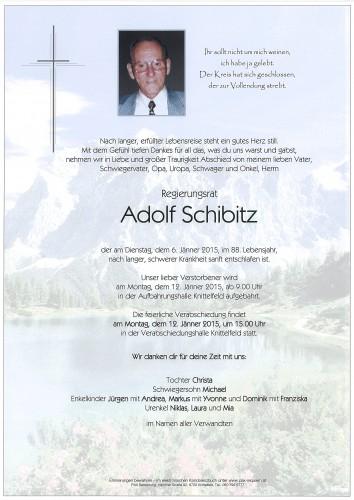 Regierungsrat Adolf Schibitz