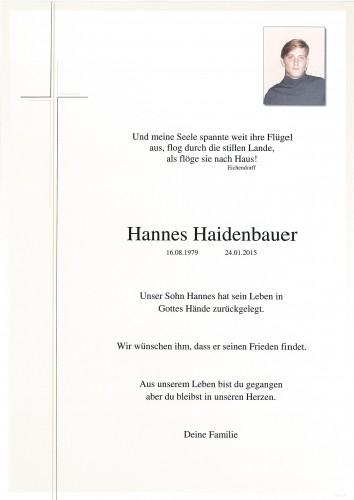 Hannes Haidenbauer