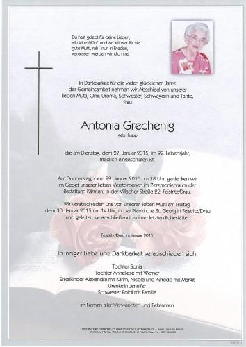 Antonia Grechenig