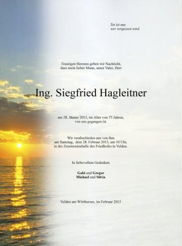 Ing. Siegfried Hagleitner