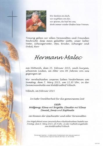 Hermann Malec