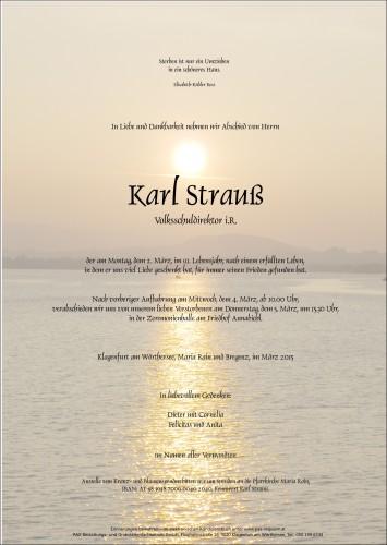 Karl Strauß