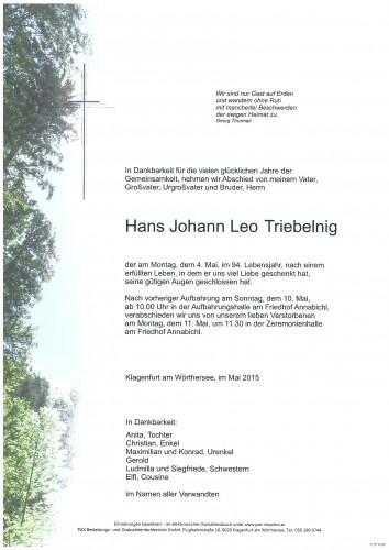 Hans Johann Leo Triebelnig