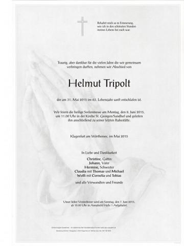 Helmut Tripolt