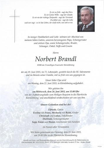 Norbert Brandl