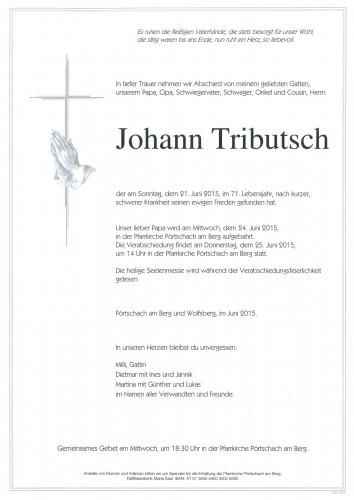 Johann Tributsch