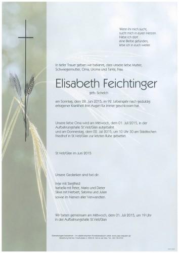 Elisabeth Feichtinger