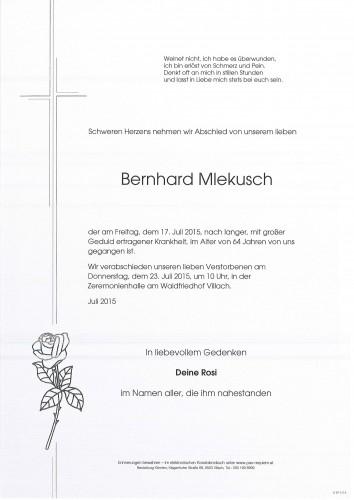 Bernhard Mlekusch