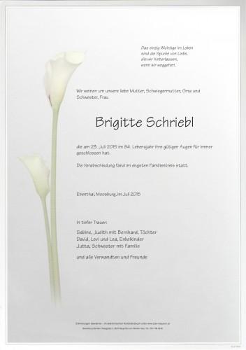 Brigitte Schriebl