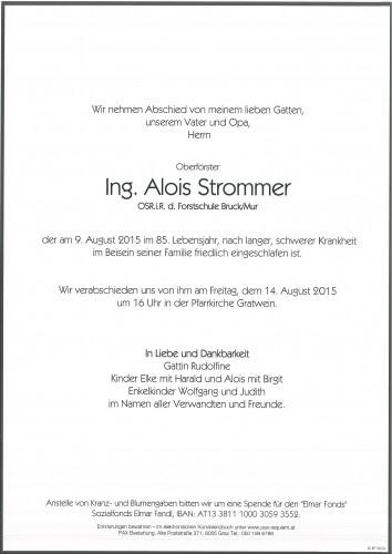 Ing. Alois Strommer