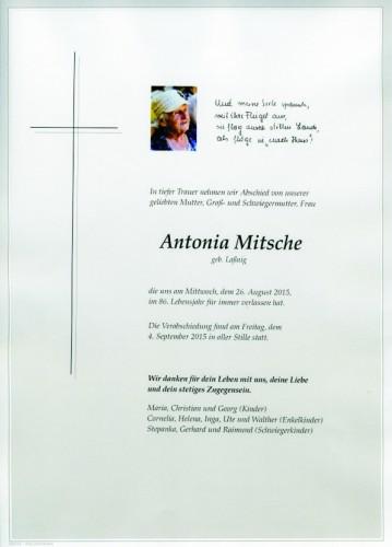 Antonia Mitsche