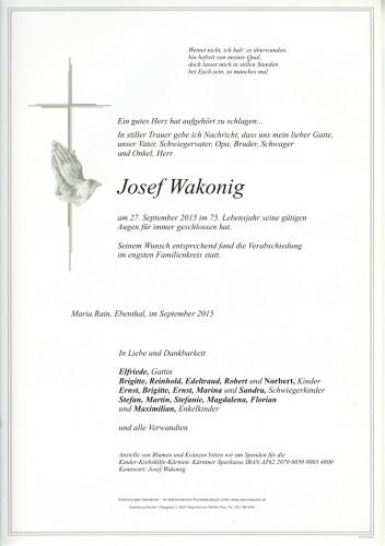 Josef Wakonig