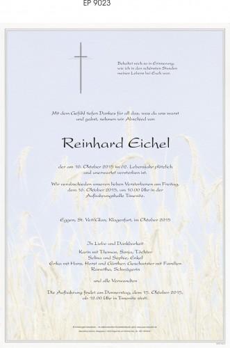 Reinhard Eichel