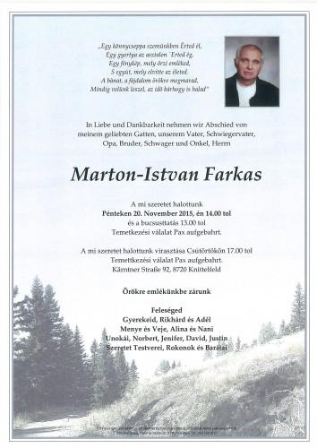 Marton-Istvan Farkas