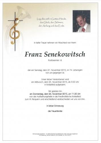 Franz Senekowitsch