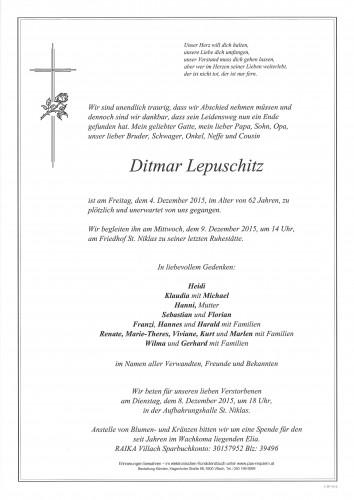 Ditmar Lepuschitz