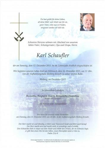 Karl Schaufler