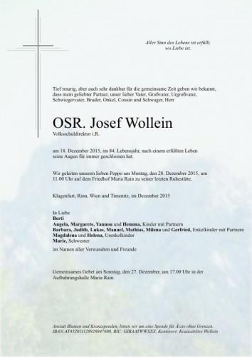 Josef Wollein