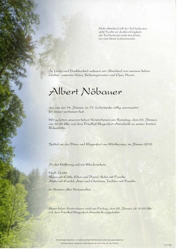 Albert Nöbauer
