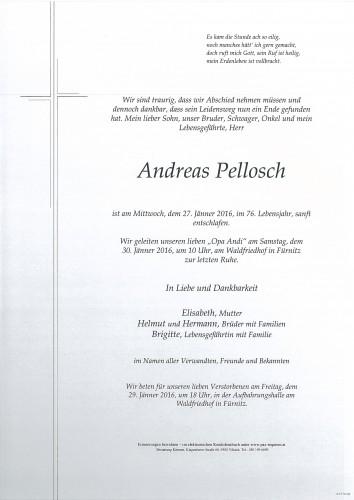 Andreas Pellosch