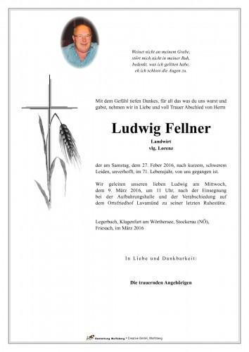 Ludwig Fellner