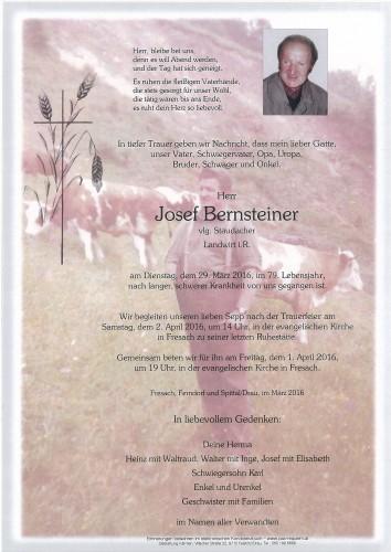 Josef Bernsteiner