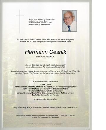 Hermann Cesnik