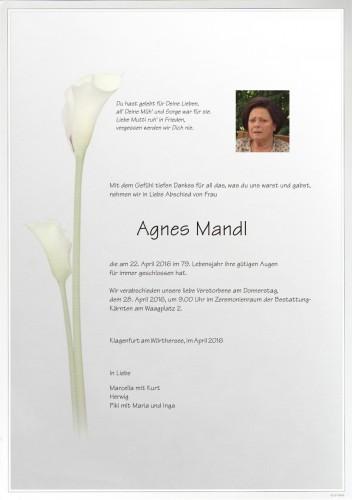 Agnes Mandl