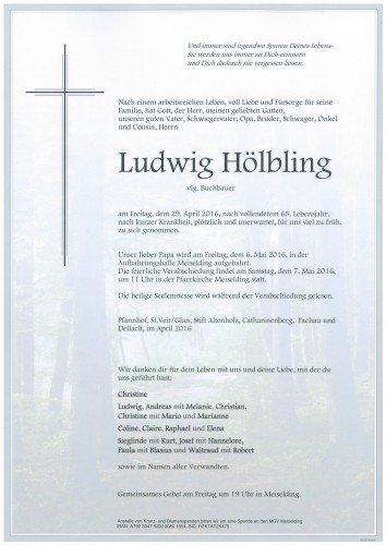 Ludwig Hölbling