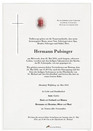 Hermann Pulsinger