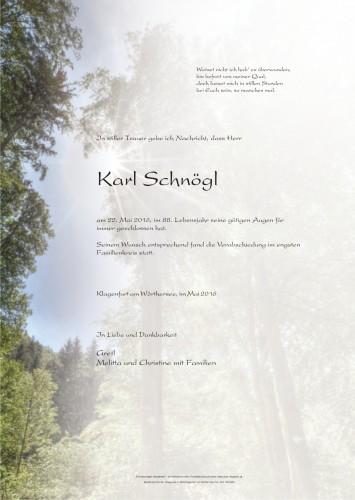 Karl Schnögl