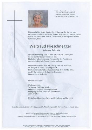 Waltraud Plieschnegger